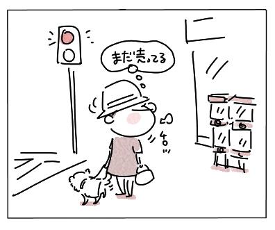 ふちいぬ1