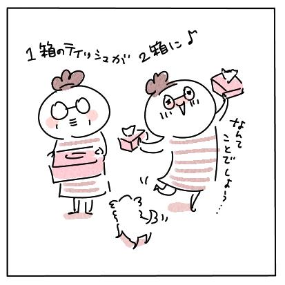 ハーフティッシュ6
