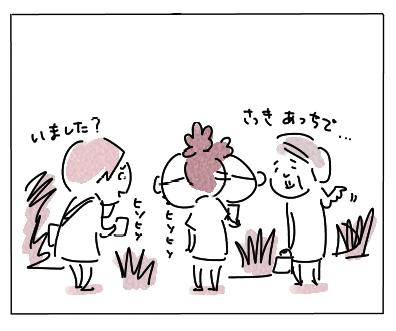 カルガモ2