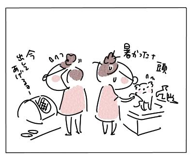 暑い獣医14