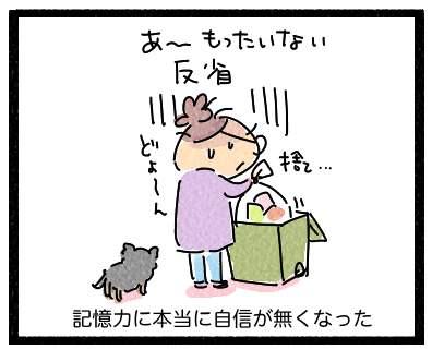 賞味期限3