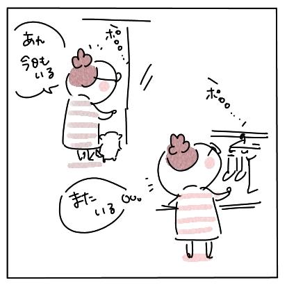 野鳩事件簿12