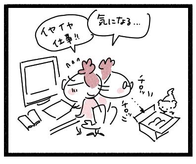 ペンライト2