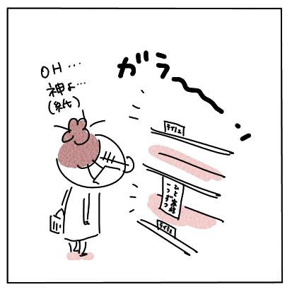 ハーフティッシュ1
