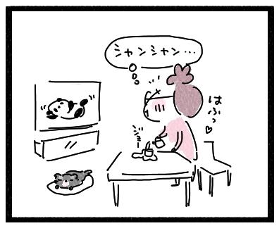 しゃんしゃん1