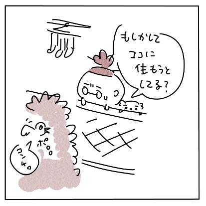 野鳩事件簿13