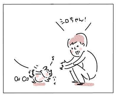 しろちゃん3