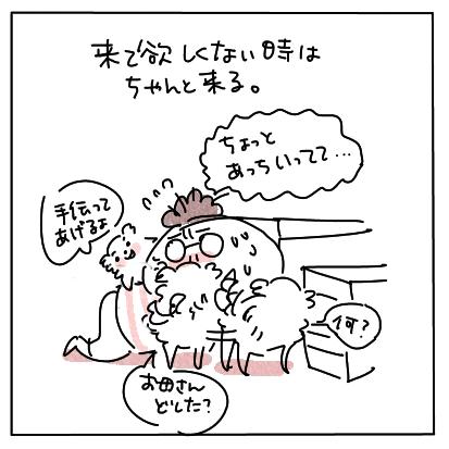 くるこない7