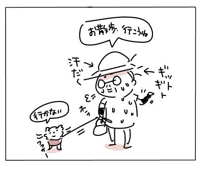 ファサー5