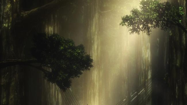 巨大樹の美しさ