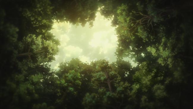 巨大樹から見上げる空はとても綺麗で
