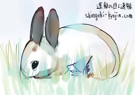 アニとウサギ