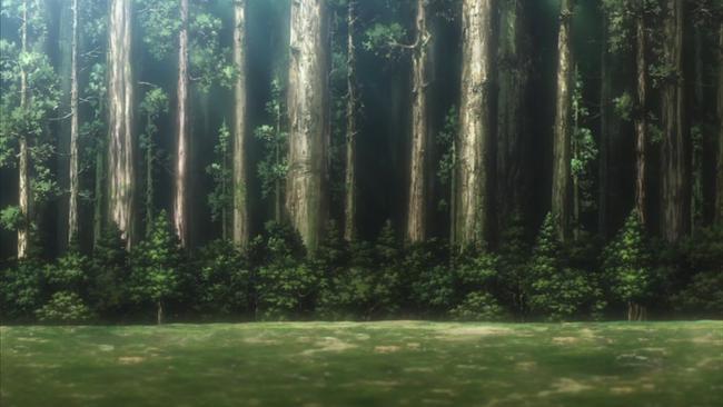 18話美しい巨大樹の森