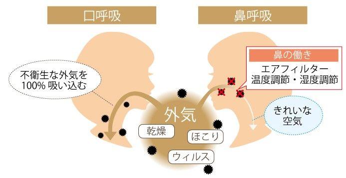 口呼吸 鼻呼吸 画像2