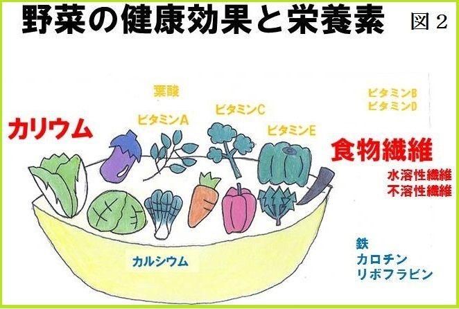 野菜の栄養と効果 画像2