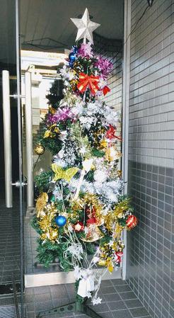 玄関前のツリー