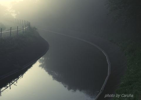 朝もやの水路で