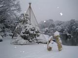Rikugien Trees in Winter Dress