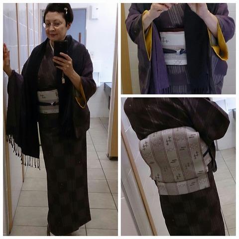 Kimono 2015-11-24 e