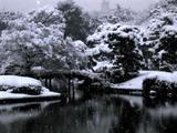 Rikugien Pond