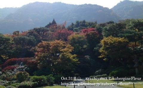 Arashiyama2009-2_1_1ed
