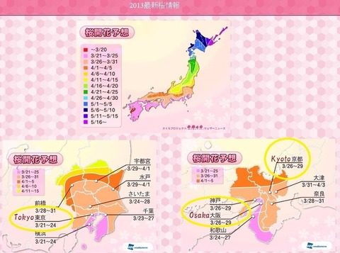 weather-news-sakura