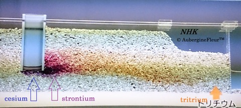 Radioactive Water Flow Model
