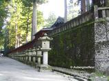 Lane of Stone Lanterns