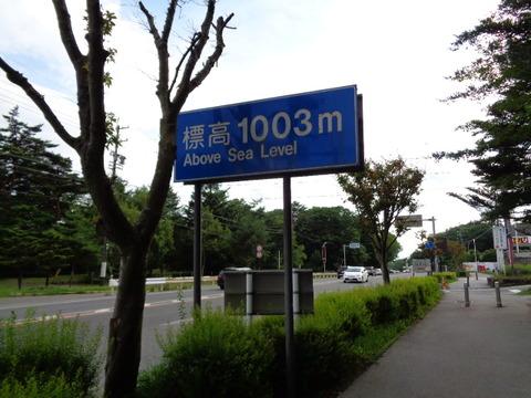 DSC09507
