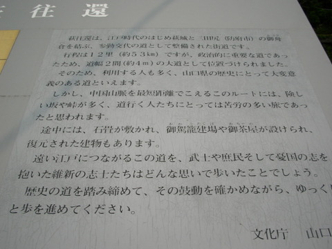 IMG_1558