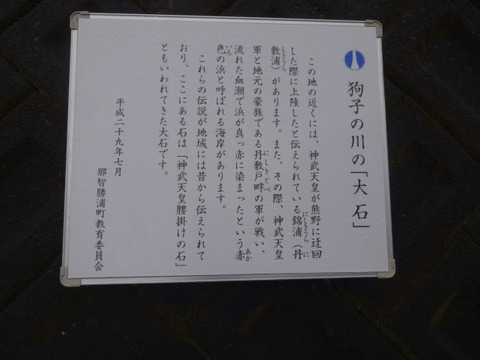 DSC03105