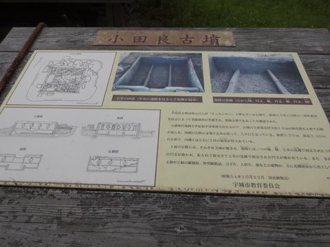 DSC05385