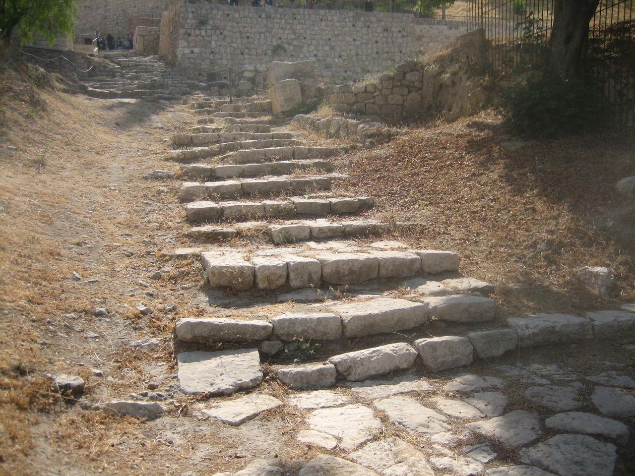 イスラエル 245