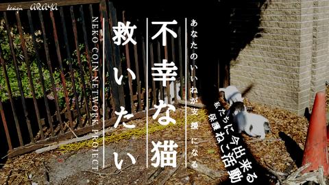 全 (2)