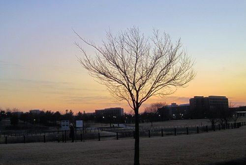 26公園1