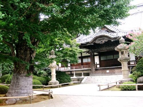 15高円寺境内