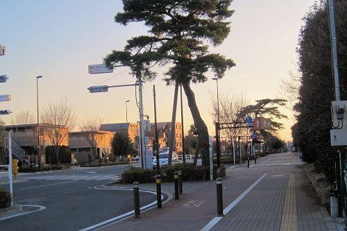 16武蔵境6