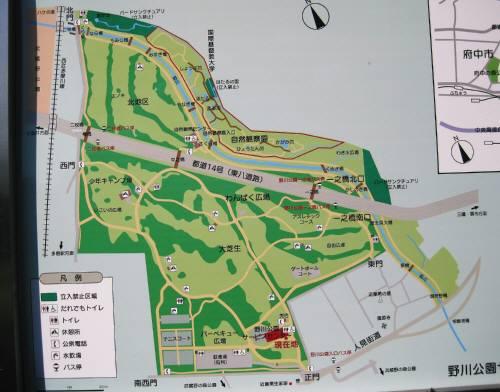 27野川案内図2