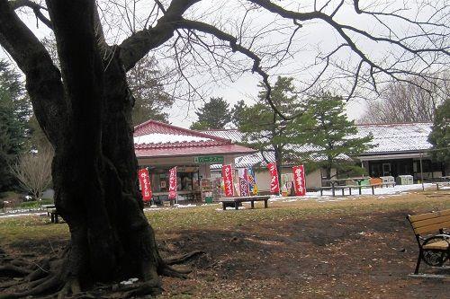 野川6 売店