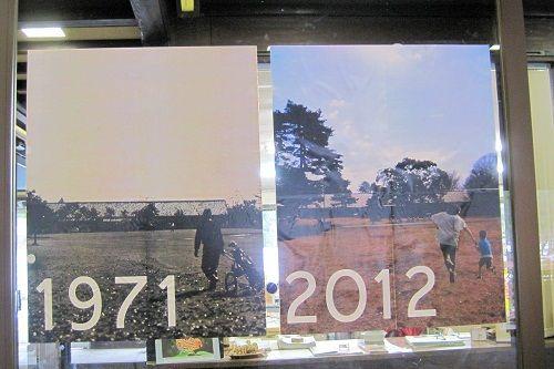 野川8 1971−2012