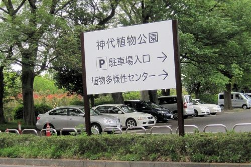 神大駐車場