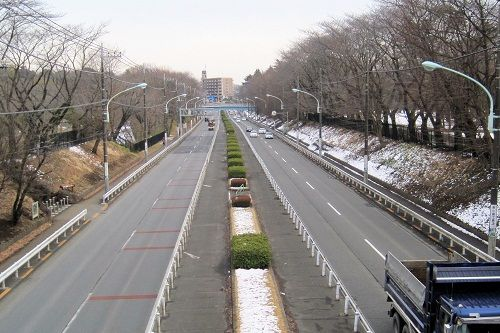 野川4 東八