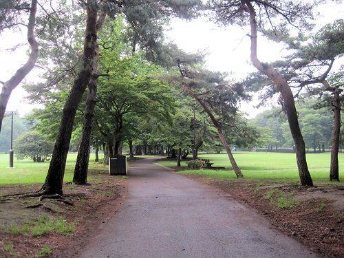 02野川公園