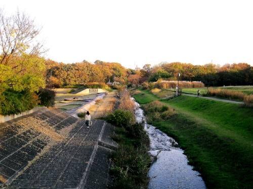29野川3武蔵野公園
