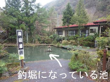 釣堀になっている池