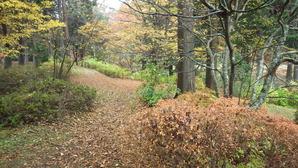 菖蒲池園地の方