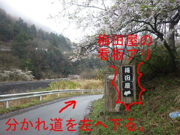 分かれ道を左へ下る。