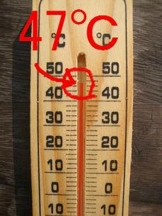 昼は47℃
