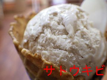 サトウキビ+ワッフルコーン