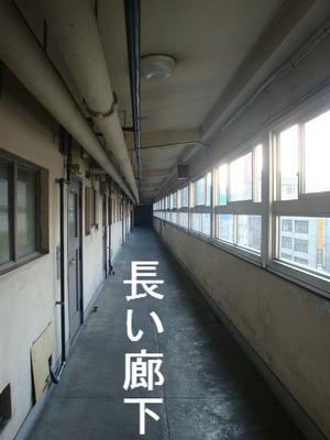 10Fの長い廊下